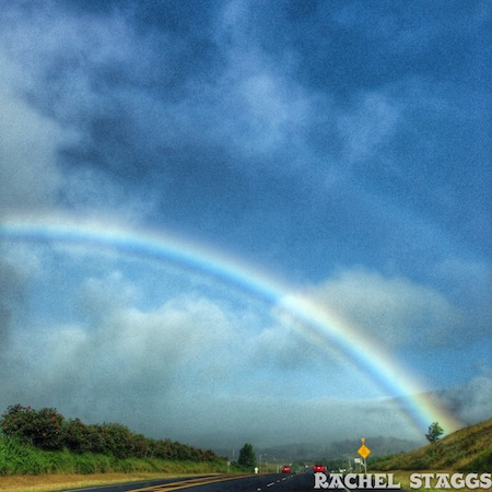 upcountry maui rainbow